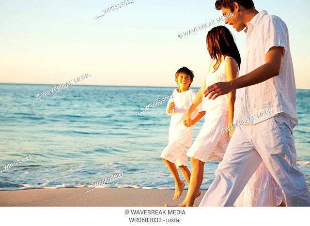 Family walking hand in hand at sunset time
