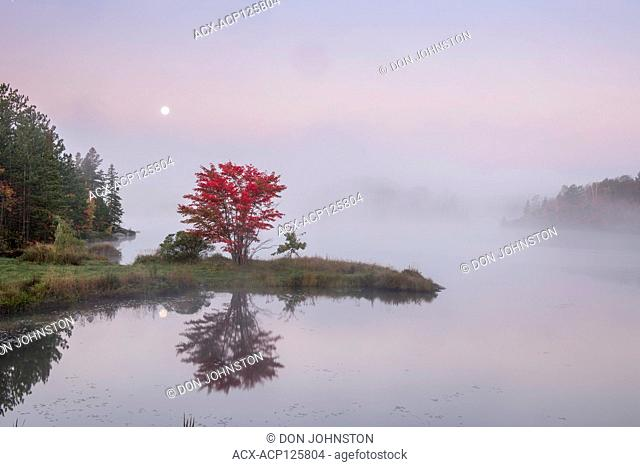Autumn reflections and setting moon in St. Pothier Lake at dawn, Greater Sudbury, Ontario, Canada