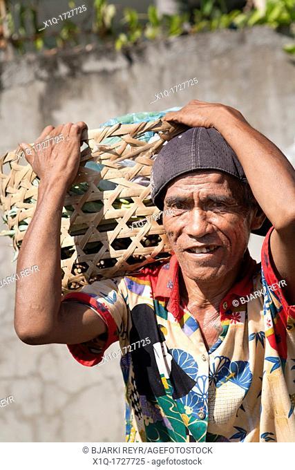 Street vendor carrying a basket full of Gabi  Cebu City, Cebu, Visayas, Philippines