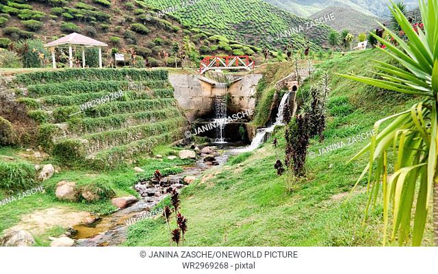 Malaysia, Pahang, Tanah Rata, Small waterfall between tea plantations