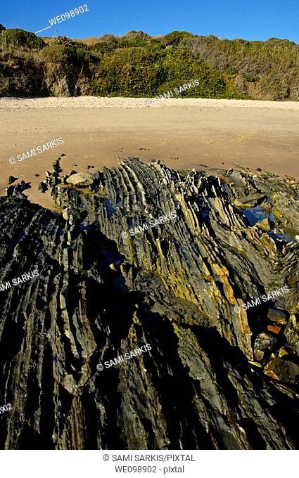 Coastal rock on the beach at Playa de los Lances, Tarifa, Andalusia, Spain