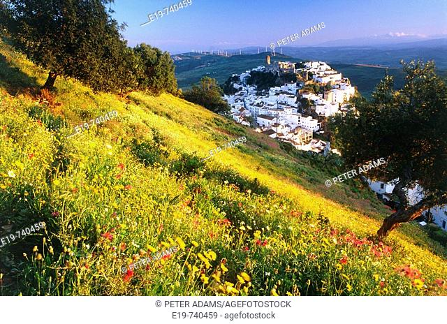 Caseras, Andalusia, Spain