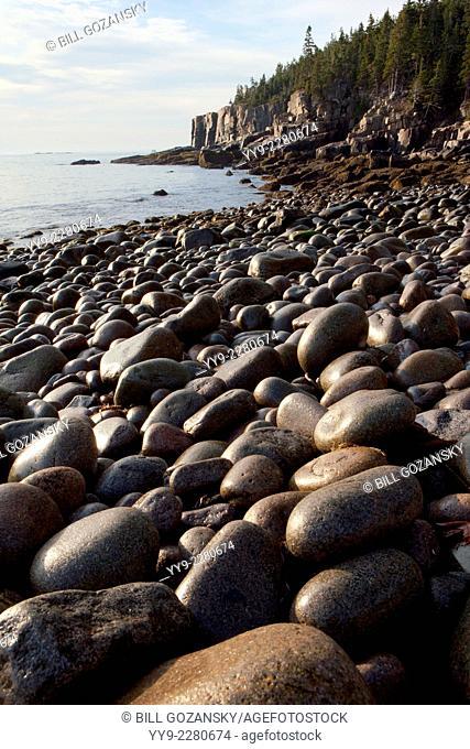 Otter Cliff Landscape - Acadia National Park - Bar Harbor, Maine USA