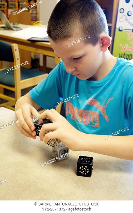 6th Grade Boy Working With Robotic Cubes, Wellsville, New York, USA