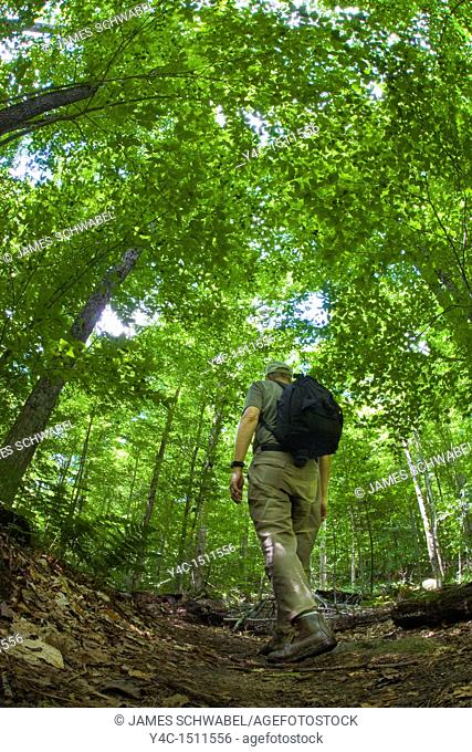 Fisheye view from a low angle on the ground of man hiking in the Adirondack Mountains of New York