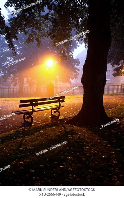 Park Bench under a Tree on a Misty Morning Knaresborough Castle North Yorkshire England
