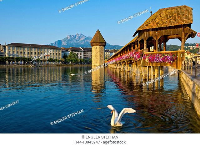 Switzerland, Europe, Lucerne, Luzern, town, city, Old Town, chapel bridge, Reuss, river, bridge, landmark, touristical