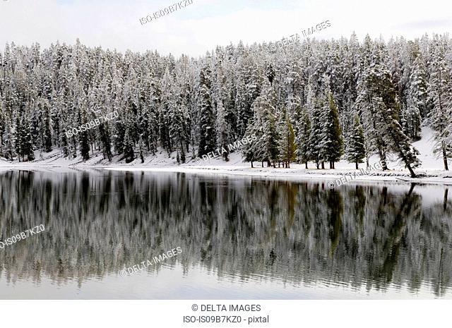 Yellowstone River in winter, Yellowstone National Park, Wyoming, USA