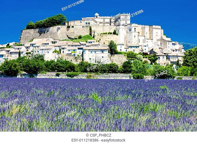 Grignan with lavender field, D�partement Dr�me, Rh�ne-Alpes, France