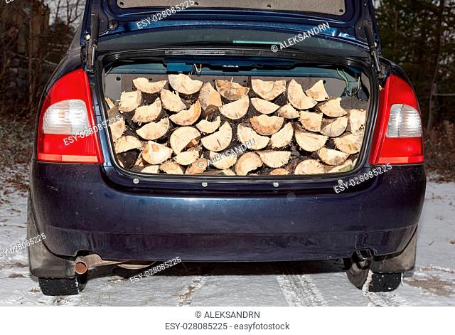 harvesting firewood for the winter because of problems with the supply of gas