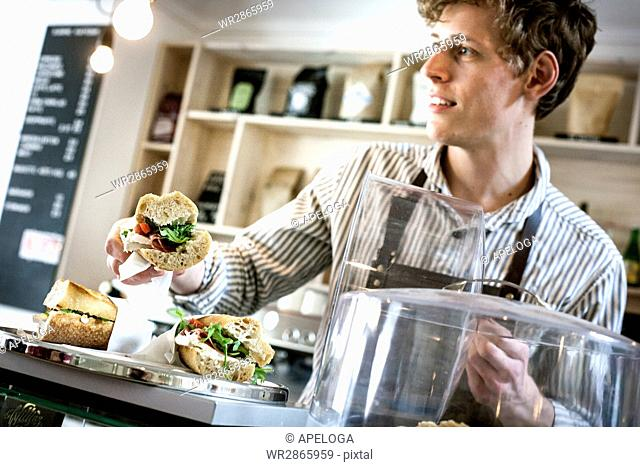 Young waiter serving sandwich in cafe
