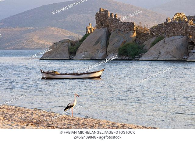 Ruins of Bizantine castle and monastery in the Kapikiri Islet in Lake Bafa with fishing boat and stork in the foreground. Mugla, Turkey