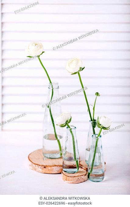 Four white buttercups in small, glass bottles standing in the wooden rollers with white shutter in the background