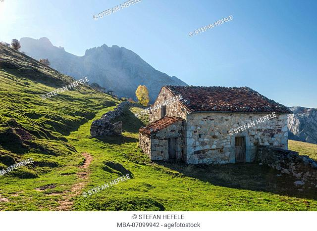 Alp in the Picos de Europa, Spain