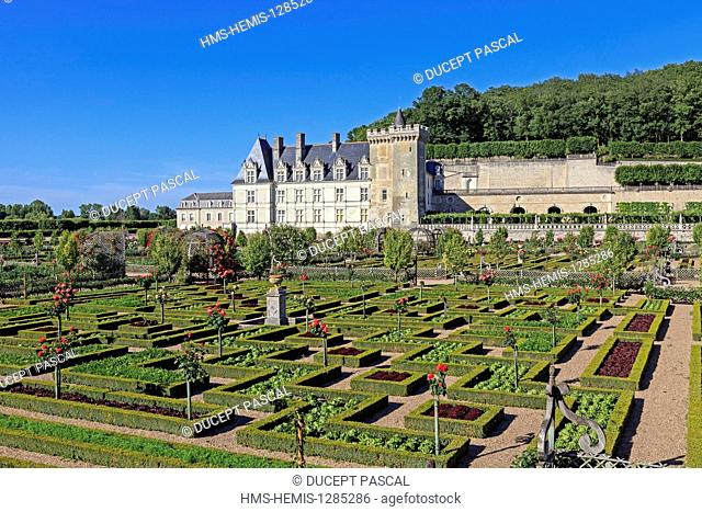 France, Indre et Loire, Loire valley listed as World Heritage by UNESCO, the castle of Villandry belonging to Angelique and Henri Carvallo, the gardens