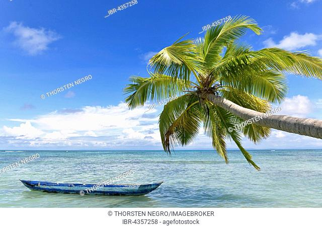 Idyllic beach with boat and palm tree, eastern Madagascar, offshore island, Île aux Nattes, Nosy Nato