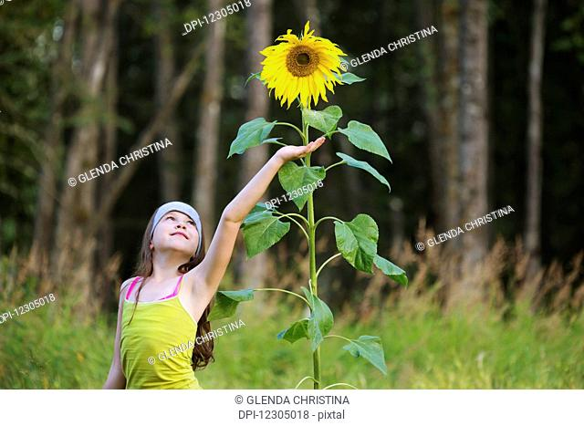 A tween girl poses by a tall sunflower plant in Palmer, Southcentral Alaska, autumn