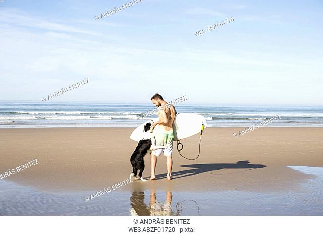 Man with dog and surfboard on the beach