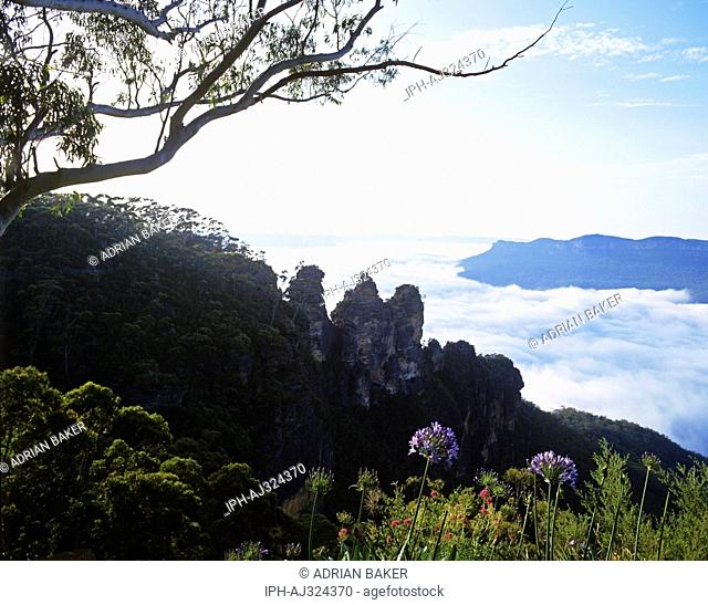Blue Mountains National Park - Early morning view of the Three Sisters overlooking a fog filled valley