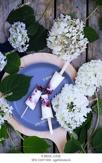 Yoghurt icecreams with red fruit and flowers