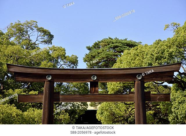 At the entrance to the Meiji Gingu shrine which is is one of the biggest shrine in Japan