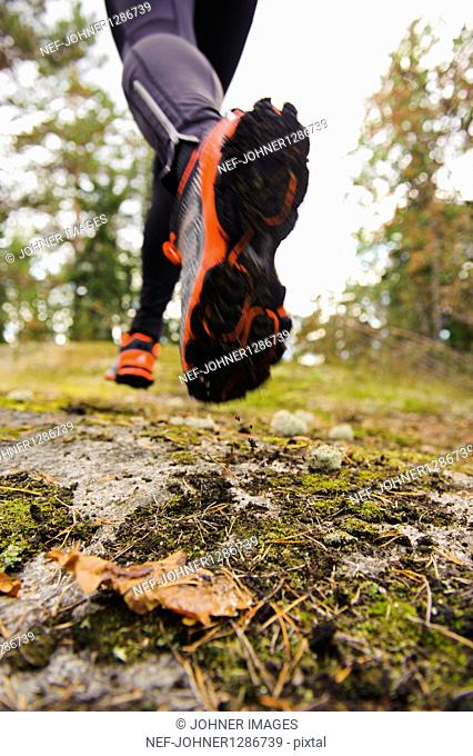 Legs of jogger in forest