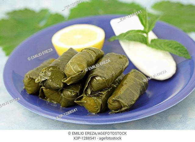 Dolmades  Typical food from Greece  Made with vine leaves