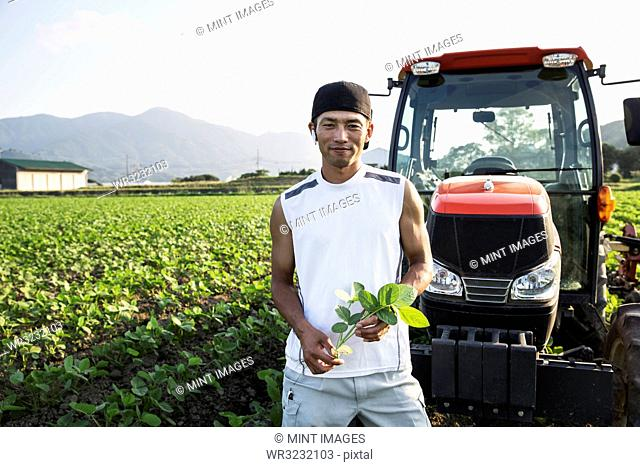 Japanese farmer standing in front of red tractor in a soy bean field, looking at camera