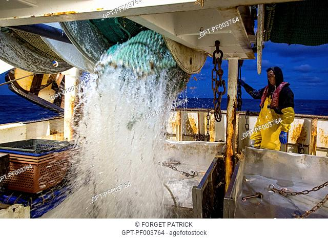 RAISING OF THE FISHING NETS DURING A TRAWLING HAUL, SEA FISHING ON THE SHRIMP TRAWLER 'QUENTIN-GREGOIRE' OFF THE COAST OF SABLES-D'OLONNE (85), FRANCE