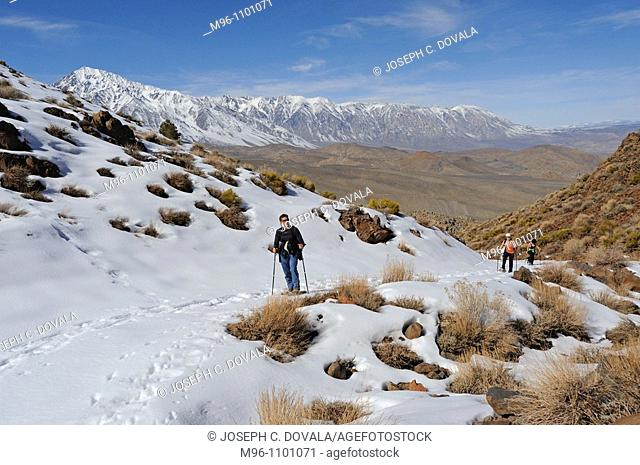 People climbing trail in snowshoes, Inyo National Forest, California, USA