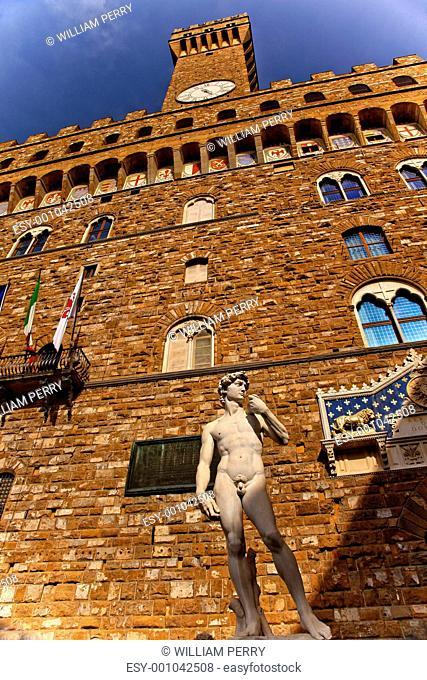 Palazzo della Signoria Palazzo Vecchio David Statue Copy Florenc
