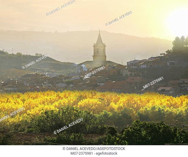Navarrete, Camino de Santiago, Santiago way. Navarrete village in autumn, La Rioja, Rioja wine region, Spain, Europe