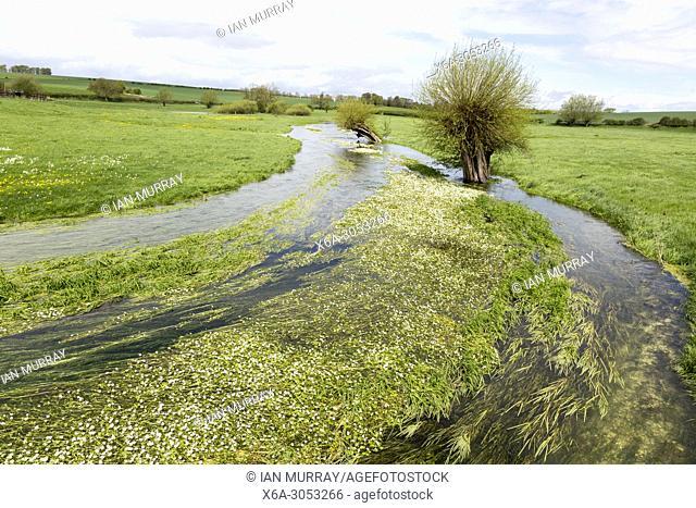 River Till seasonal chalk stream known as a winterbourne, Winterbourne Stoke, Wiltshire, England, UK