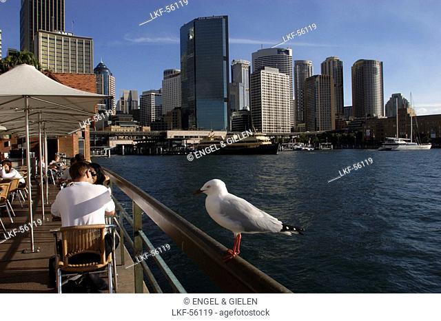 Tourists, bar, cafÚ, restaurant, open-air, Circular Quay, panorama, skyline of Central business district, CBD, harbour, port, Sydney Cove
