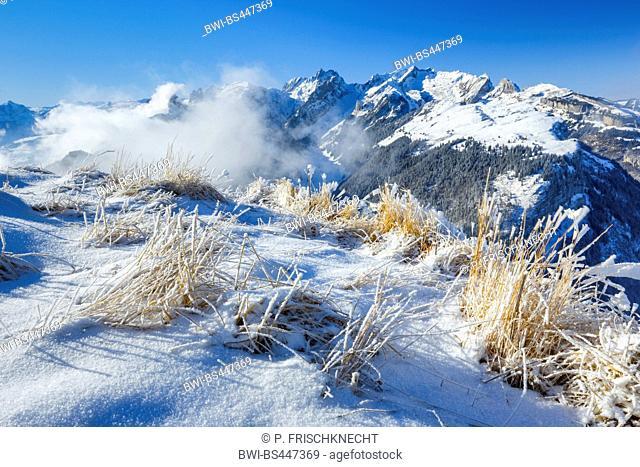 view from Hoher Kasten in winter, Switzerland, St. Gallen