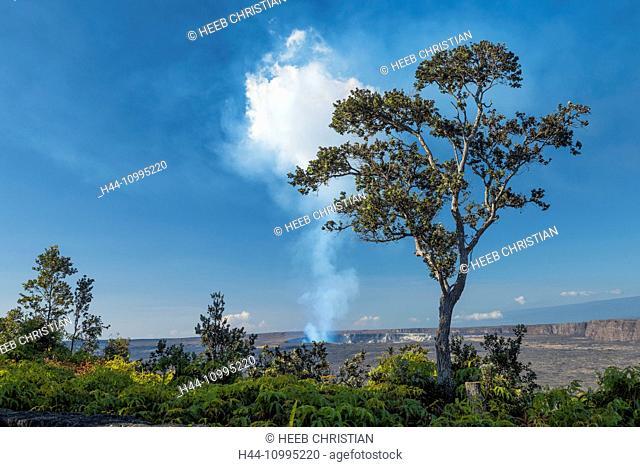 USA, Vereinigte Staaten, Amerika, Hawaii, Big Island, Volcanoes National Park, UNESCO, World Heritage, volcano