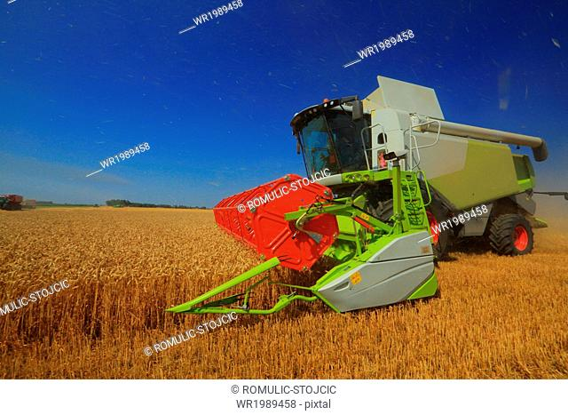 Combine harvester in field, Slavonia, Croatia
