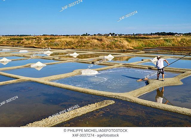 France, Loire-Atlantique, Guérande, Salt marshes of Guerande