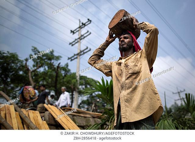 DHAKA, BANGLADESH - APRIL 30 : Bangladeshi day labors lift a heavy timber in Dhaka, Bangladesh on April 30, 2017.