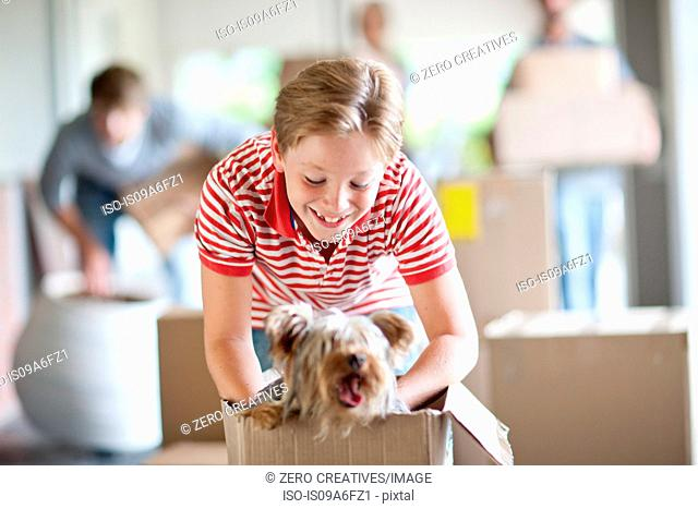 Boy moving house with dog in box
