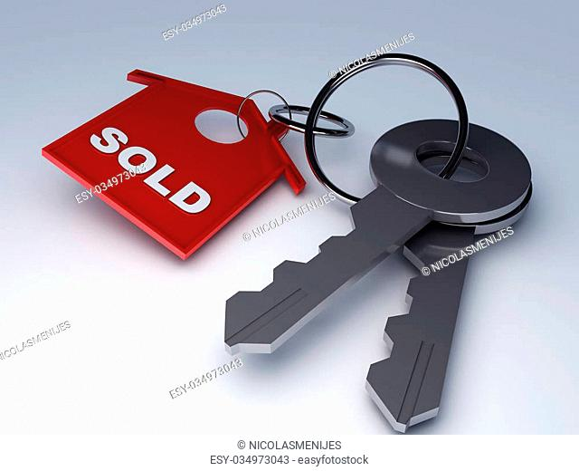 Home key with house keychain symbol 3d illustration