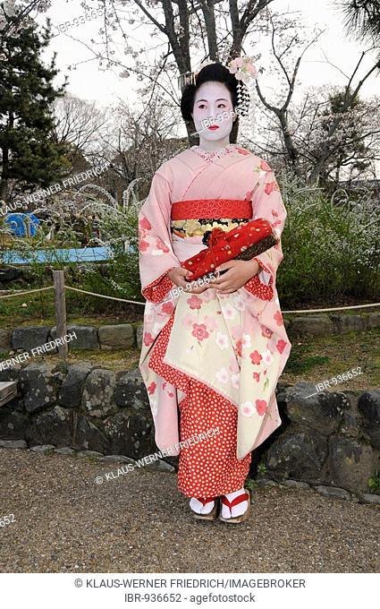 A Maiko, a trainee Geisha, in Maruyama Park, Kyoto, Japan, Asia