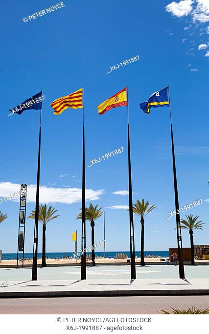 Flags of regions of Spain on flagpoles against blue sky with palm trees on promenade