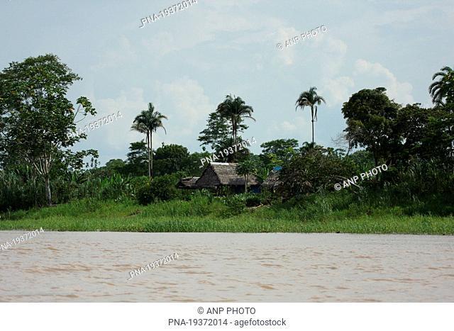 Amazone, Iquitos, Loreto, Maynas, Peru, South America