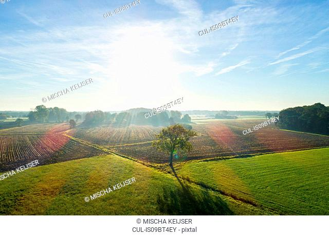 Field landscape in autumn sunlight, elevated view, Netherlands