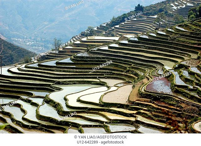 rise terrace in China Yunnan Yunyang