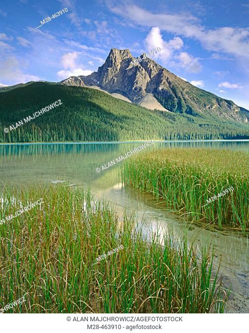 Emerald Lake, Yoho National Park. British Columbia, Canada