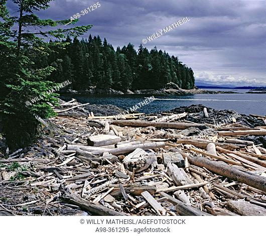 Pacific Rim National Park. Vancouver Island, Canada