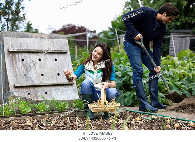 A young couple working on an allotment together