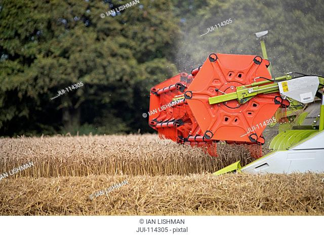 Close Up Of Combine Harvester Harvesting Wheat Crop